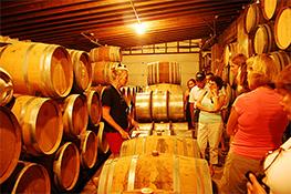 VA-Wine-Tours